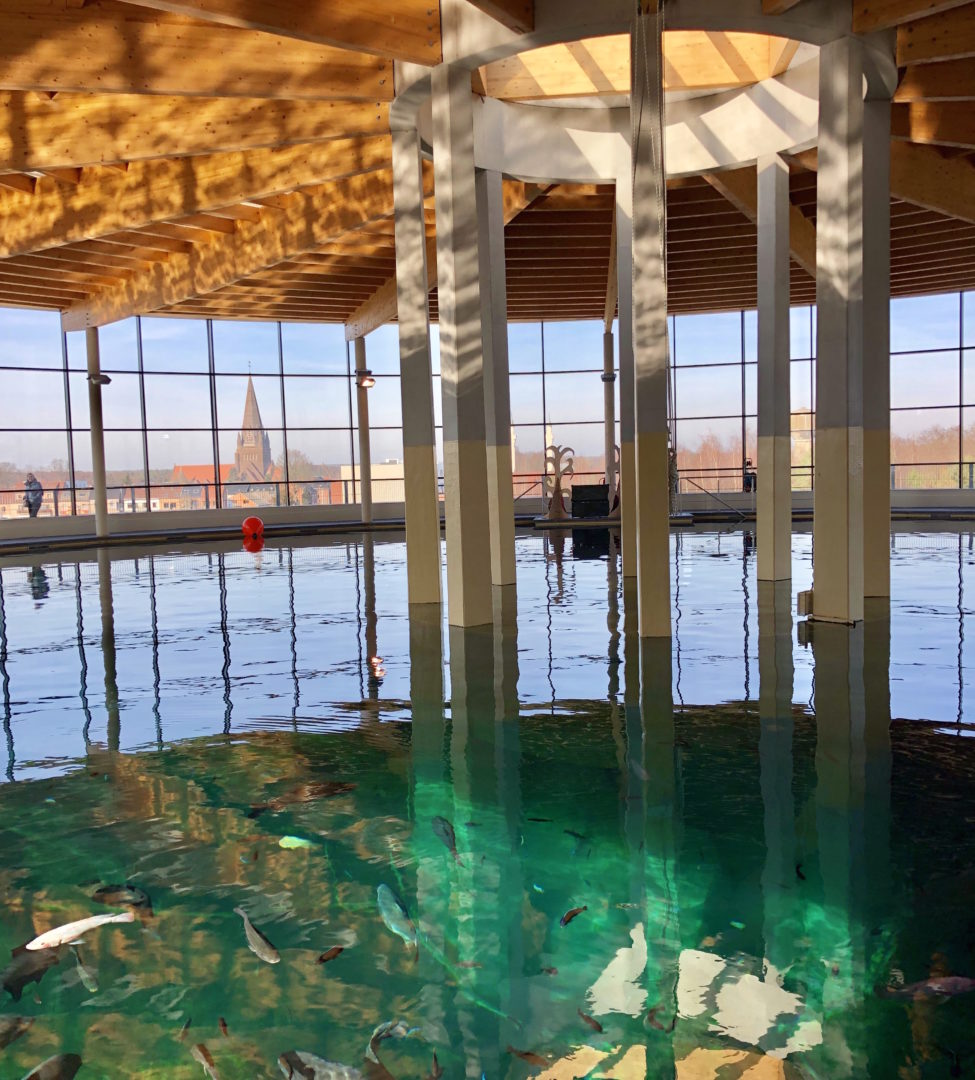 photo de présentation du bassin de plongée chez Todi